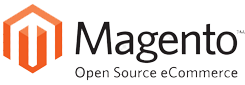 Magento Website Integration